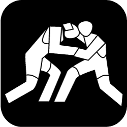 Icon Ringen