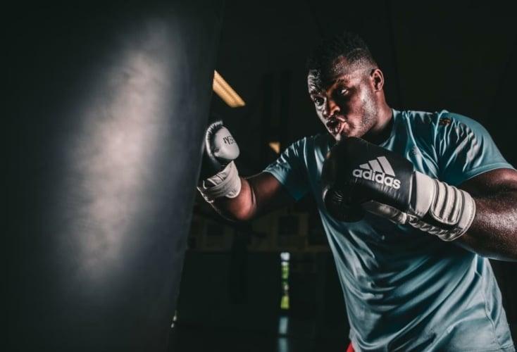 Bild zur News Cologne Boxing World Cup: Gold für Nadine Apetz & Nelvie Tiafack